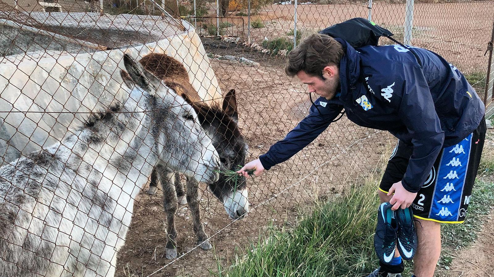 emil-åsnor-spanien