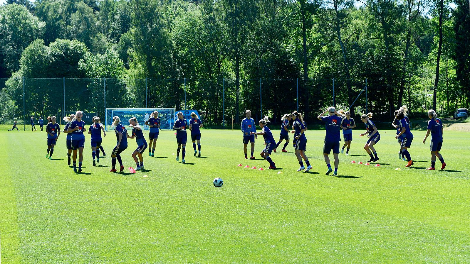 Damlandslaget tränar på Kamratgården 2018Damlandslaget tränar på Kamratgården 2018